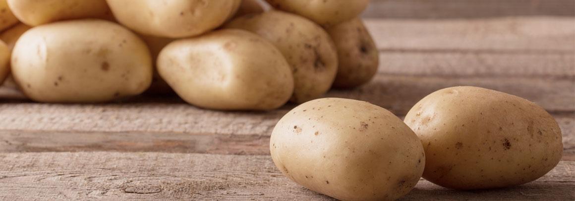 trigs-homepg-banner-potato-harvest.jpg