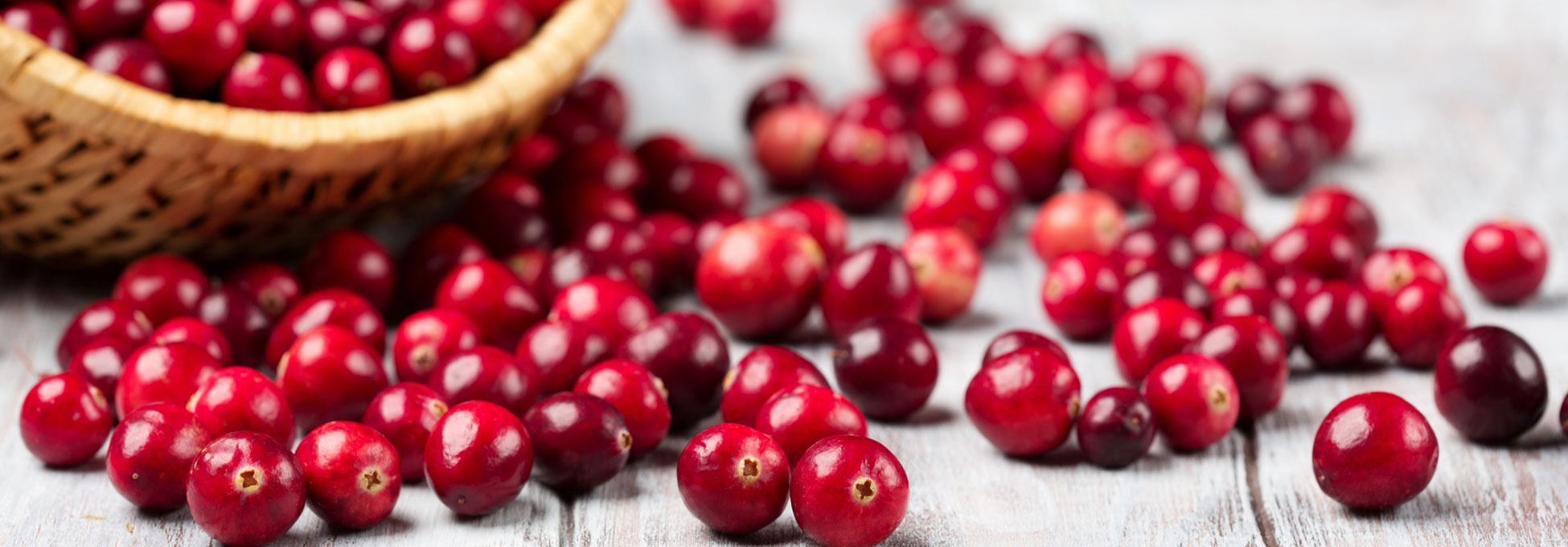 trigs-homepg-cranberries-hires.jpg