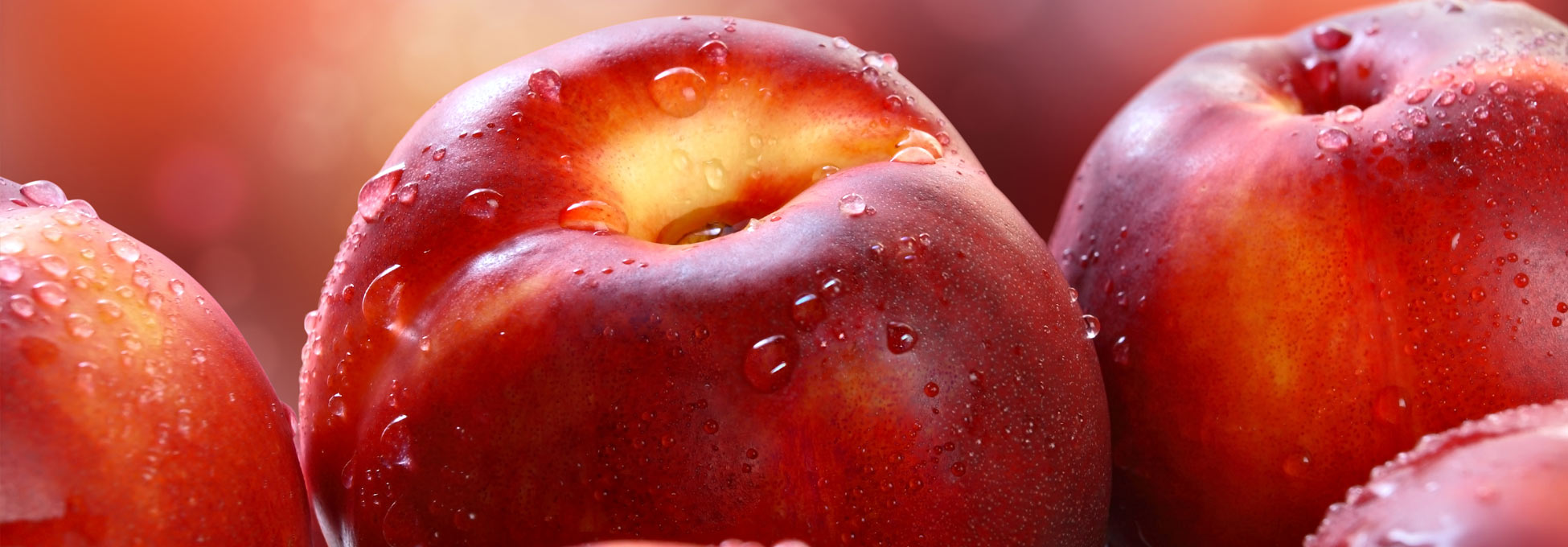 trigs-homepg-banner-nectarines.jpg