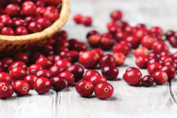 trigs-loveitlocal-lake-nakomis-cranberries.jpg